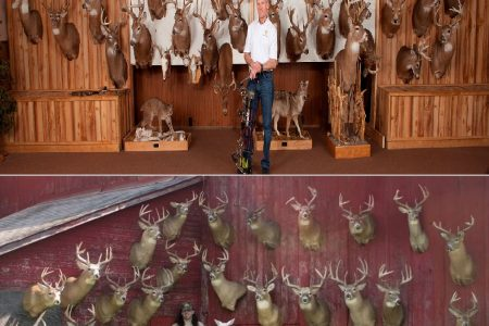 down south hunting podcast scent control series