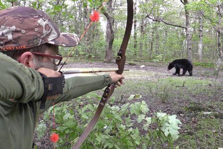 clay newcomb bear hunting magazine